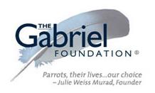 gabrielfoundation1